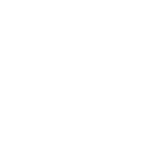Expert Research and Strategy Icon