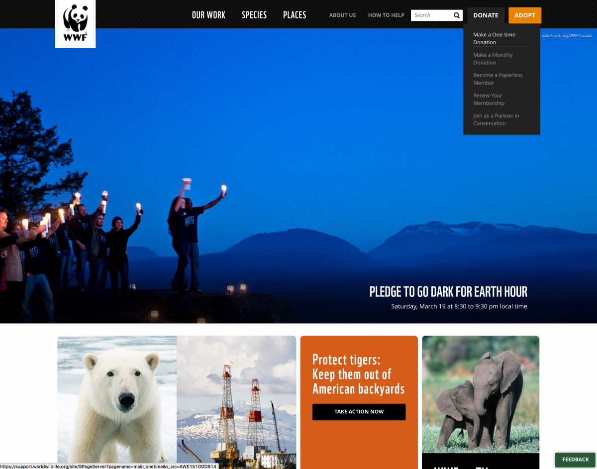 WWF Best Not For Profit Online Donation Experience Example
